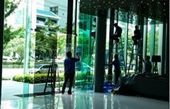 3M Window Films